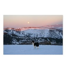 Bella & Mountain View Postcards (Package of 8)