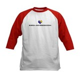 Bosnia And Herzegovina heart Tee