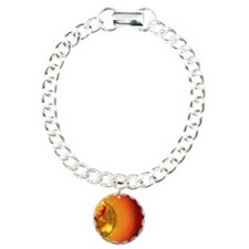 Globe of  Asia and Austr Bracelet
