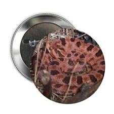 "copperhead 2.25"" Button (10 pack)"