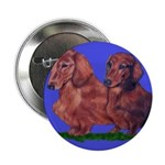 Long Haired Dachshunds Button