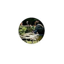 mtcheaha_statepark Mini Button