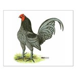 Blue OE Cock Small Poster