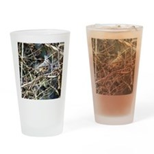 TuftedTitmouseiPad2 Drinking Glass
