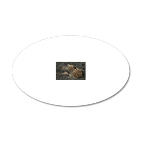Lion cub (Panthera leo) sitt 20x12 Oval Wall Decal