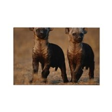 Two spotted hyena pups (Crocuta c Rectangle Magnet