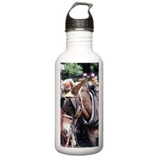 Decorated horse harnes Water Bottle
