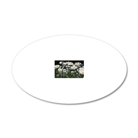 Daisies in field 20x12 Oval Wall Decal