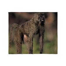 Olive baboon (Papio anubis), on sava Throw Blanket