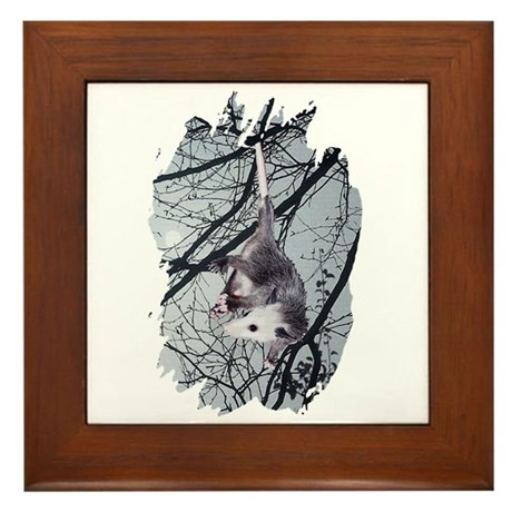 Moonlight Possum Framed Tile