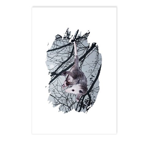 Moonlight Possum Postcards (Package of 8)