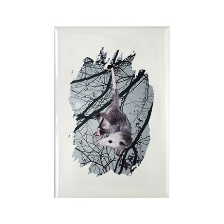 Moonlight Possum Rectangle Magnet