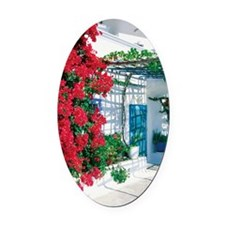 Red bougainvillea on the wall of a Oval Car Magnet