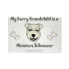 MiniatureSchnauzerWhite Rectangle Magnet