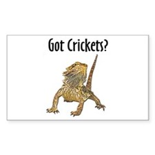 Bearded Dragon Got Crickets Rectangle Decal