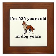 75 birthday dog years collie 2 Framed Tile