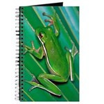 Green Tree Frog Journal