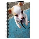 Dancin' Doggy Journal