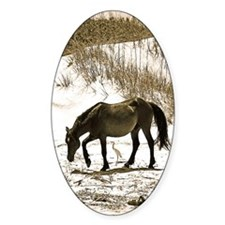 Wild Pony and Egret Friends Decal