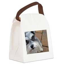 Annabelle Canvas Lunch Bag