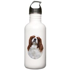 nancyheadpng Water Bottle
