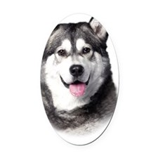 portrait1b Oval Car Magnet