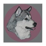Gray Alaskan Malamute Tile Coaster