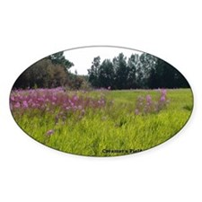 Creamers-field-flowers-2800x2000 Decal