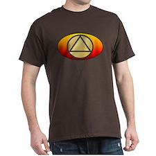 circletriangle_autotag_gold-fire_10x10trans T-Shir