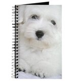 Coton de Tulear Journal