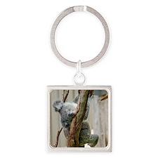 Koala6 HIRES Square Keychain