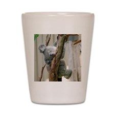 Koala6 HIRES Shot Glass