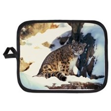 Snow leopard Potholder