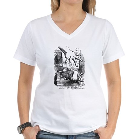 Rabbit and the Arm Women's V-Neck T-Shirt
