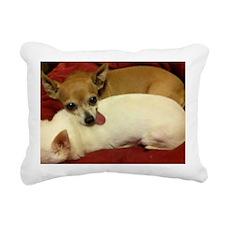 Worn Out Rectangular Canvas Pillow