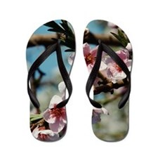Blooming flowers on tree Flip Flops