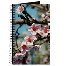 Blooming flowers on tree Journal