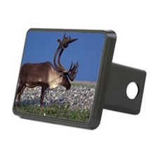Caribou Hitch Cover