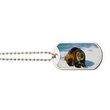 Wolverine in winter Dog Tags