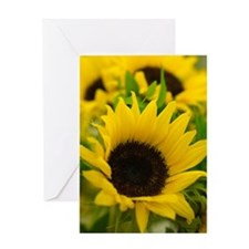 24117635 Greeting Card
