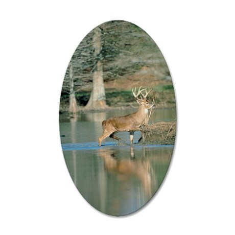 Deer in water 35x21 Oval Wall Decal