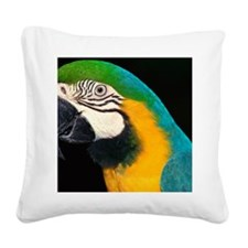 Blue and gold macaw Square Canvas Pillow