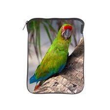Great green macaw on a tree iPad Sleeve