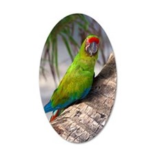 Great green macaw on a tree Wall Decal
