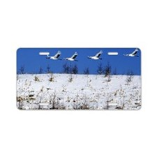Geese flying over a winter  Aluminum License Plate
