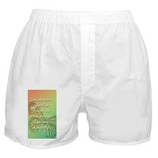 5x3_sticker_butterfly Boxer Shorts