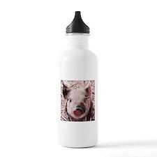 sweet piglet, pink Water Bottle