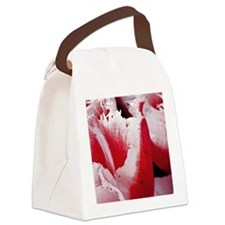 pink tulip ipad 2 case Canvas Lunch Bag