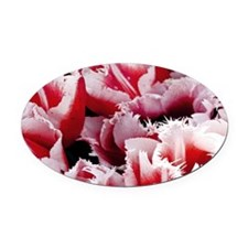 pink tulip coin purse Oval Car Magnet