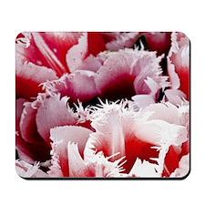 pink tulip pillow Mousepad